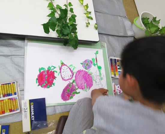 小学生 絵画/ドラゴンフルーツってどんな味?
