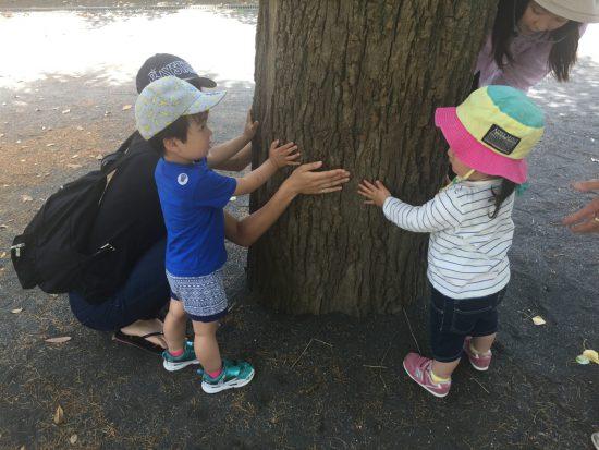 親と子の造形あそび/木をかこう