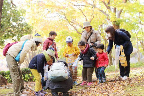 自然観察会+落葉のコラージュ
