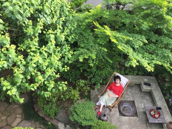 新緑キラキラ☆アトリエ5の庭